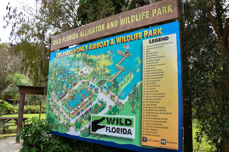 Wild Florida 17