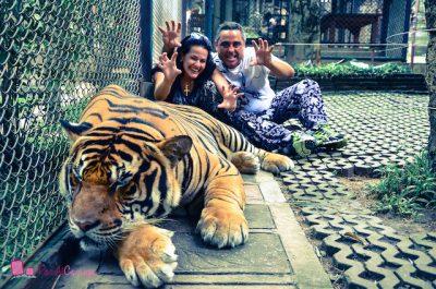 Chiang Rai a Chiang Mai